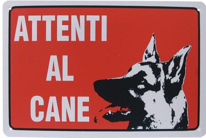 Attenti al cane - 10 curiosità sui cani